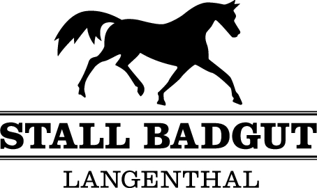 stall-badgut.ch